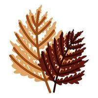 foliage branches leaves autumn isolated design white background vector