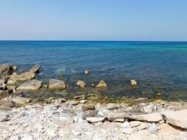 Blue seashore during the day