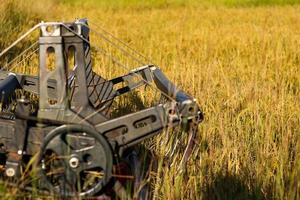 Harvester in a field