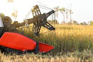 Harvester gathering rice