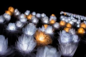 Close-up of decorative lights photo