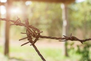 Close-up of a barbed-wire fence photo