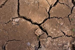 Dry cracked dirt