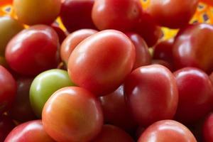tomates rojos. un montón de tomates.