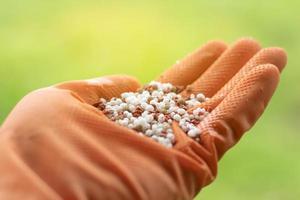 Glove with fertilizer