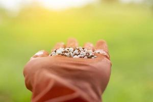 Macro shot of hand holding mixed chemical fertilizer. Minerals used in agriculture, farms, fields. photo