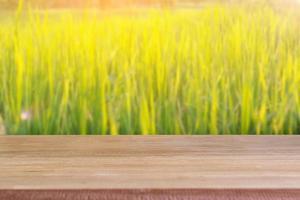 mesa de madera en blanco con fondo de campo de arroz.