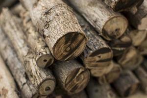 Close-up of sticks