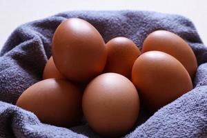 Eggs on a cloth photo