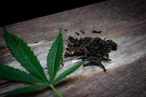 Green marijuana leaves and dried marijuana leaves photo
