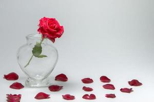 Red rose in a heart-shaped bottle