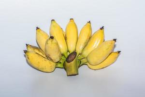 Plátanos amarillos sobre fondo blanco.