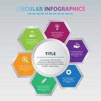 Circular Infographic With Hexagon Shapes vector