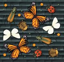 conjunto de diferentes insectos aislados vector