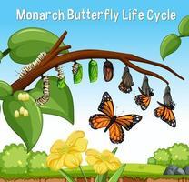 escena con ciclo de vida de la mariposa monarca vector
