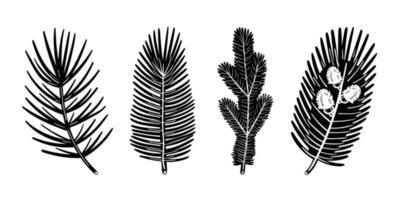 Spruce branch pine tree element set. Christmas plant monochrome design. vector