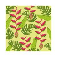 heliconias plantas tropical patrón de fondo vector