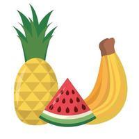 diseño de vector de fruta de plátano piña y sandía