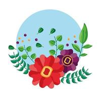 Isolated flowers round design vector