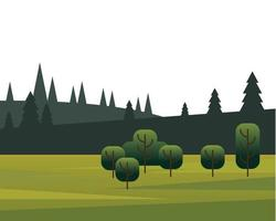 trees and pine forests in field scene vector
