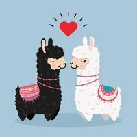 Cute llama couple in love vector