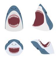 gran tiburón blanco con la boca abierta vector