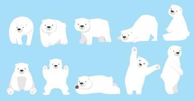 lindo oso polar divertido conjunto de caracteres vector