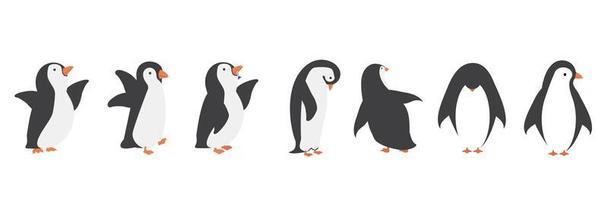 conjunto de caracteres de pingüino vector