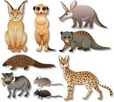 Conjunto de animales africanos salvajes aislados sobre fondo blanco. vector