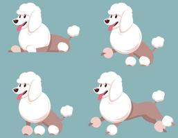 Poodle in different poses. vector