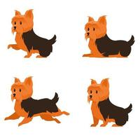 Yorkshire terrier in different poses. vector