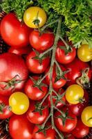Vista superior de verduras como cilantro y tomates como fondo foto