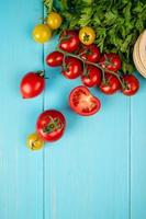 Top view of vegetables as coriander and tomatoes on blue background with copy space photo