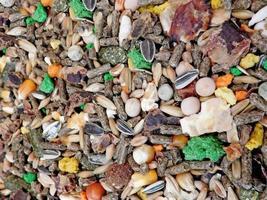 Rabbit feed texture