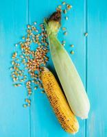 Vista superior de mazorcas de maíz y semillas de maíz sobre fondo azul.