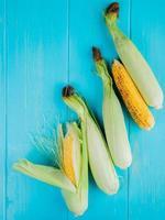Vista superior de las mazorcas de maíz sobre fondo azul.