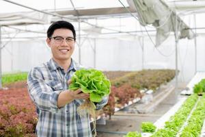 jardinero están recogiendo verduras orgánicas. foto