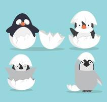 Cute Baby penguins hatched in egg set vector