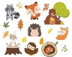 Cute woodland forest animals cartoon character set vector