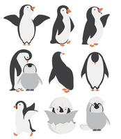 Happy penguin and chicks characters in different poses set vector