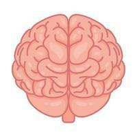 cerebro humano, símbolo de la salud mental