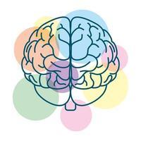 cerebro humano con círculos de colores