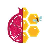 honey with half pomegranate and bee vector
