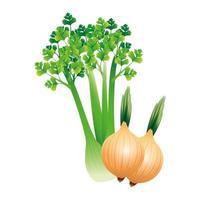 diseño de vector vegetal de apio y cebolla