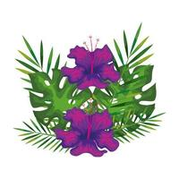 hibiscus flowers purple color with branches and leaves, tropical nature, spring summer botanical vector