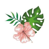 hibiscus with branch and leaves, tropical nature, spring summer botanical vector