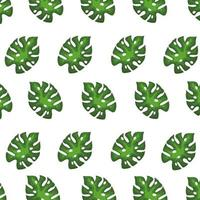 background of leaves tropical exotic, nature concept vector