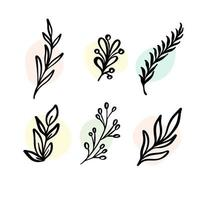 vector set elementos botánicos - flores silvestres, hierbas. colección de jardín y follaje silvestre, flores, ramas. Ilustración plantas aisladas sobre fondo blanco.
