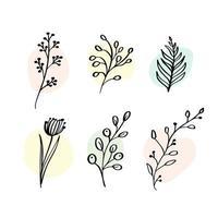 vector set elementos botánicos flores silvestres, hierbas. colección de jardín y follaje silvestre, flores, ramas. Ilustración plantas aisladas sobre fondo blanco.