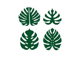 Monstera leaf icon design template vector isolated illustration